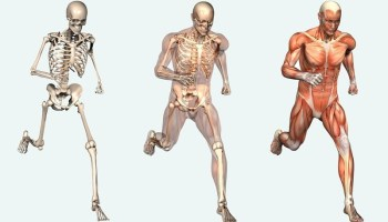 10 Strange Facts You Did Not Know About Your Body