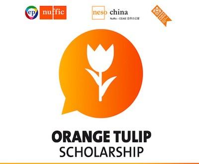 Orange Tulip Scholarship in Holland 2016