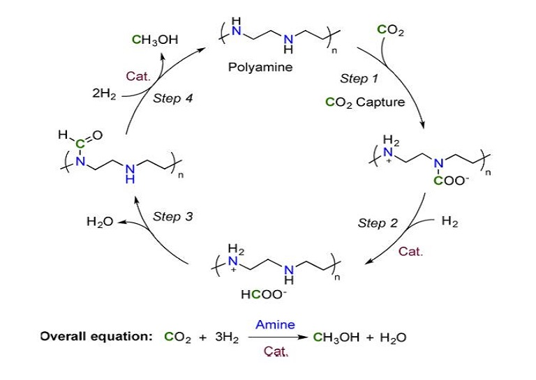 carbon dioxide reaction requence