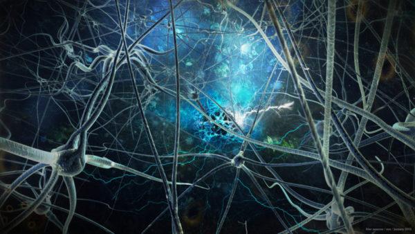 neuron-firing