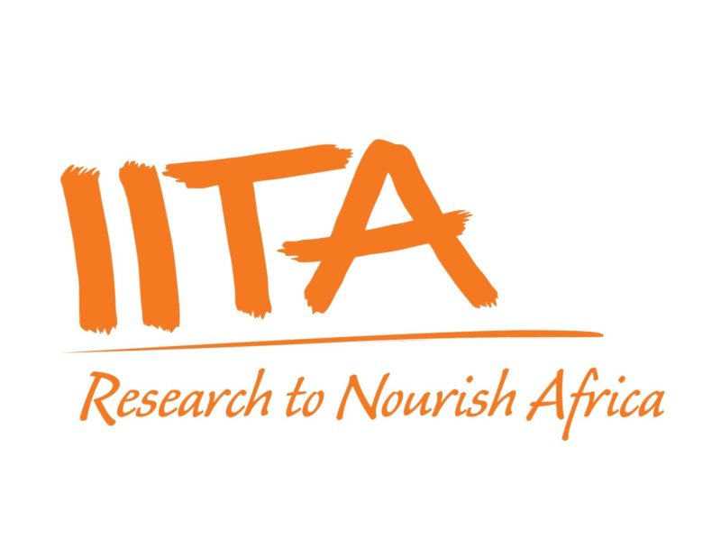 IITA Research Fellowships for Young Academics and Professionals, 2019
