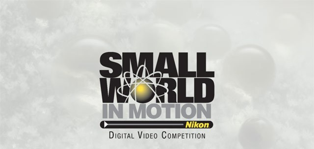 2017 Nikon Small World in Motion Digital Video Competition