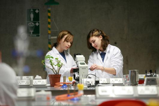 biology-experiment