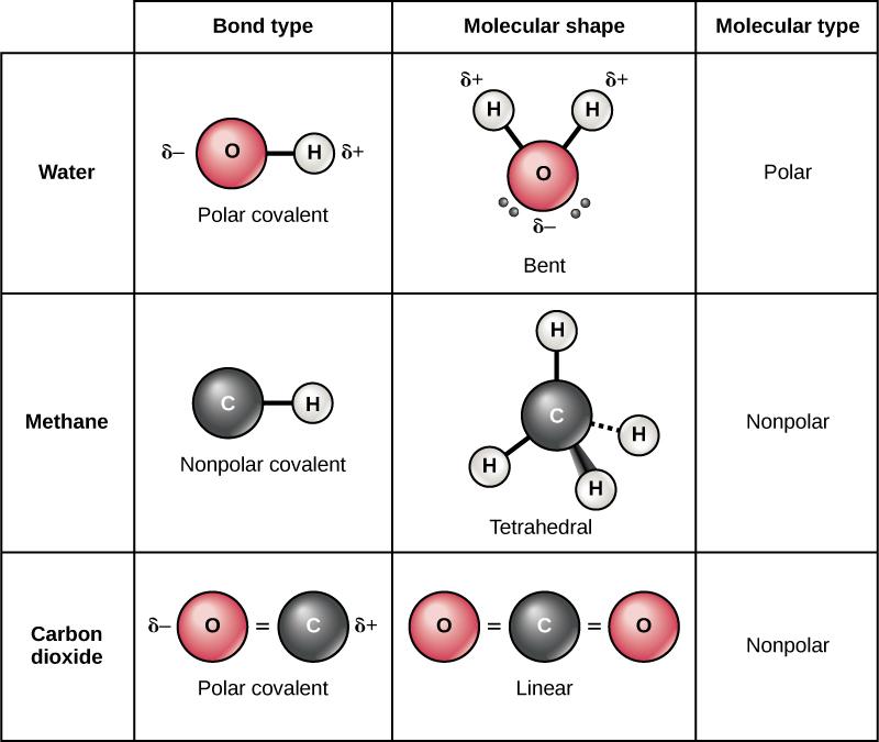 polar-nonpolar-covalent-bond