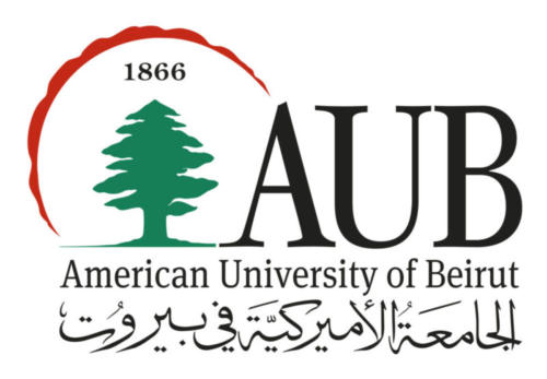 Study in Lebanon: American University Of Beirut LNI MBA Scholarships for Nigerians