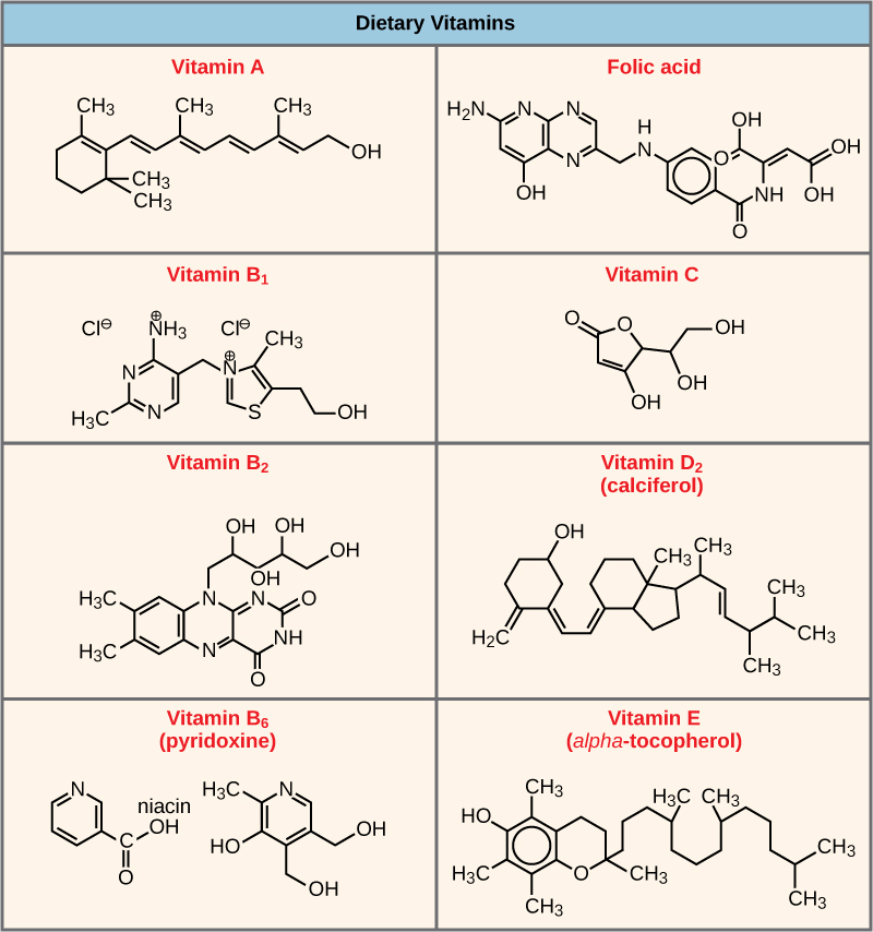 vitamin-coenzymes