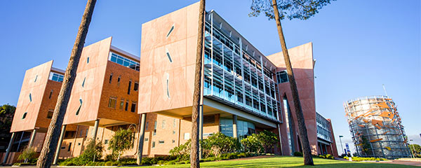 Study in Australia: 2018 Innovation Scholarships at Curtin Business School