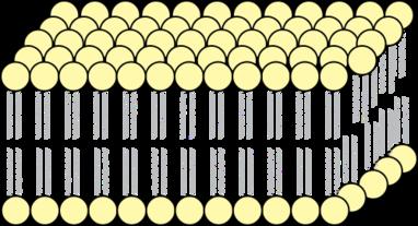 cell-membrane-biology