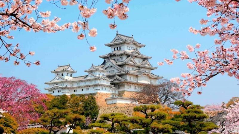 Matsumae-International-Foundation-scholarship-study-in-japan