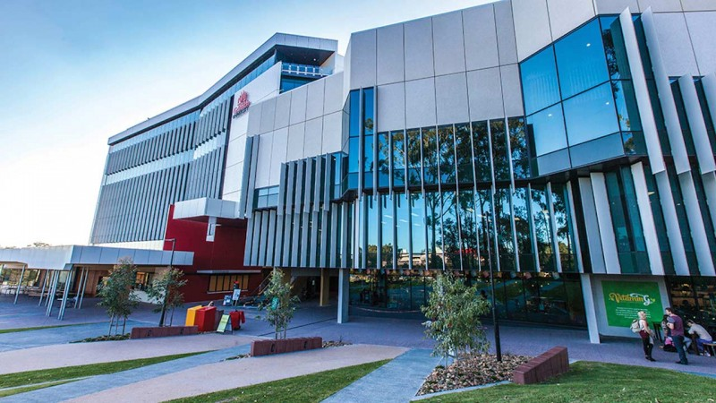 Study in Australia: 2018 International Excellence Scholarships at Griffith University