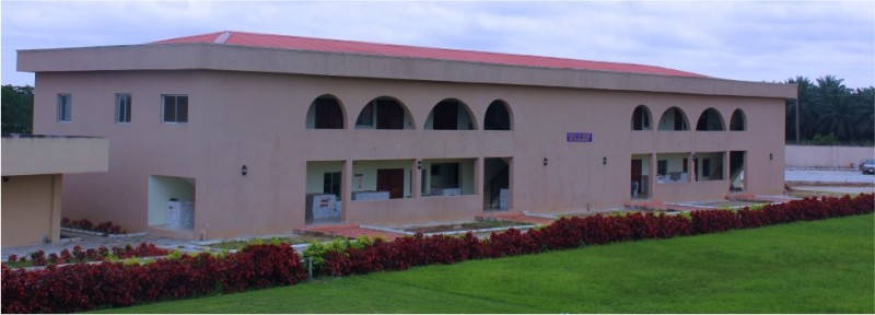 List of Courses Offered at Michael and Cecilia Ibru University (MCIU)
