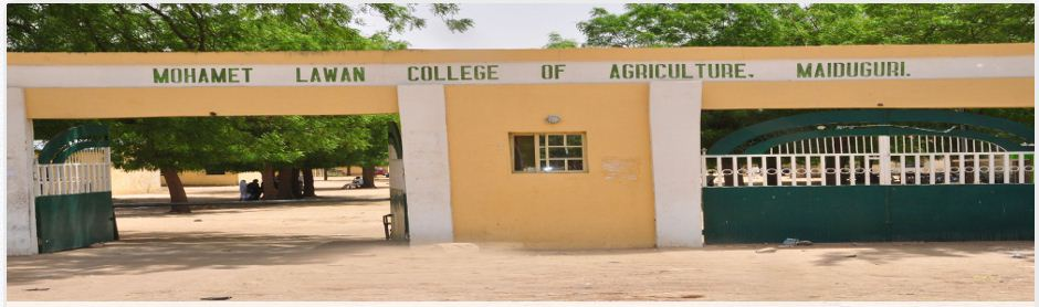 List of Courses Offered at Mohamet Lawan College of Agriculture, Maiduguri