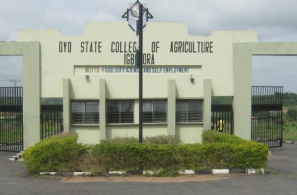 List of Courses Offered at Oyo State College Of Agriculture (OYSCATECH)