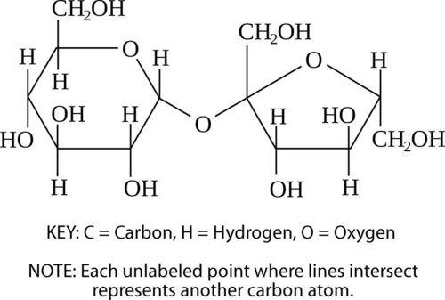 Structure of a sucrose molecule