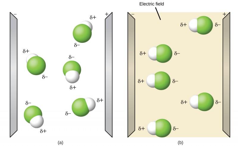 Molecular Polarity and Dipole Moment