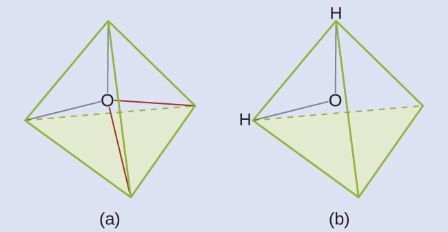 "Two diagrams are shown and labeled, ""a"" and ""b."" Diagram a shows an oxygen atom in the center of a four-sided pyramid shape. Diagram b shows the same image as diagram a, but this time there are hydrogen atoms located at two corners of the pyramid shape."