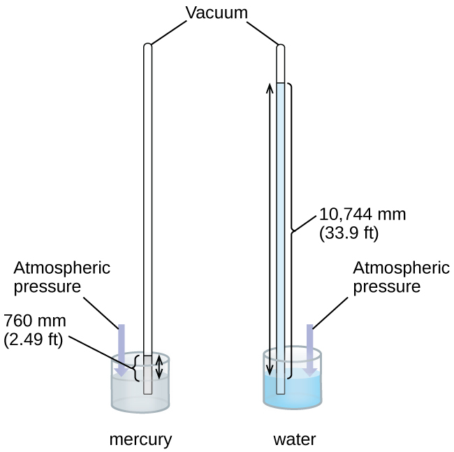 """This figure shows two barometers. The barometer to the left contains a shallow reservoir, or open container, of mercury. A narrow tube extends upward from the reservoir above the reservoir. This tube is sealed at the top. To the right, a second similar setup is shown with a reservoir filled with water. Line segments connect the label """"vacuum"""" to the tops of the two narrow tubes. The tube on the left shows the mercury in the reservoir extending in a column upward in the narrow tube. Similarly, the tube on the right shows the water in the reservoir extending upward into the related narrow tube. Double-headed arrows extend from the surface of each liquid in the reservoir to the top of the liquid in each tube. A narrow column or bar extends from the surface of the reservoir to the same height. This bar is labeled """"atmospheric pressure."""" The level of the water in its tube is significantly higher than the level of mercury in its tube."""