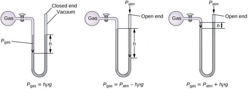"""Three diagrams of manometers are shown. Each manometer consists of a spherical pink container filled with gas on the left that is connected to a U-shaped, sealed tube by a valve on its right. The top of the U-shape aligns with the gas-filled sphere and the U, which extends below, contains mercury. The first manometer has a sealed tube. The sealed end to the upper right in the diagram is labeled """"closed end"""" and """"vacuum."""" An arrow points downward in the left side of the U shaped tube to the mercury surface. This arrow is labeled """"P subscript gas."""" The mercury level is higher in the right side of the tube than in the left. The difference in height is labeled """"h."""" Beneath this manometer illustration appears the label P subscript gas equal sign h rho g. The second manometer has an open ended tube, which is labeled """"open end."""" At this opening in the upper right of the diagram is a downward arrow, above which is the label P subscript a t m. An arrow points downward in the left side of the U shaped tube to the mercury surface. This arrow is labeled """"P subscript gas."""" The mercury level is higher in the left side of the tube than in the right. This difference in height is labeled """"h."""" Beneath this manometer illustration appears the label P subscript gas equal sign P subscript a t m minus sign h rho g. The third manometer has an open ended tube and is similar to the second manometer except that mercury level is higher in the right side of the tube than in the left. This difference in height is labeled """"h."""" Beneath this manometer illustration appears the label P subscript gas equal sign P subscript a t m plus h rho g."""
