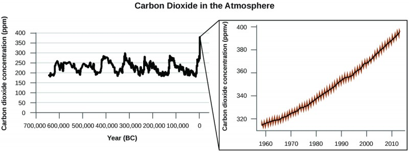"""This figure has the heading """"Carbon Dioxide in the Atmosphere."""" The first graph has a horizontal axis label """"Year ( B C )"""" and a vertical axis label """"Carbon dioxide concentration ( p p m )."""" The horizontal axis labels begin at 700,000 on the left and increases by multiples of 100,000 up to 0 on the right. The vertical axis begins at 0 and increases by multiples of 50 extending up to 400. A jagged, cyclical pattern is shown that begins before 600,000 B C at under 200 p p m. Up to 0 B C values appear to vary cyclically up to a high of about 300 p p m. Extending beyond 0 B C to the right, the carbon dioxide concentration appears to be on a steady increase, having reached nearly 400 p p m in recent years. The second graph is shown to magnify the portion of the graph that is most recent. This graph begins just before the year 1960 and includes markings for multiples of 10 up to the year 2010. The vertical axis begins just below 320 p p m and includes markings for all multiples of 20 up to 400 p p m. A smooth black line is shown extending through a jagged red data pattern. The trend is a steady, nearly linear increase from the lower left to the upper right on the graph."""