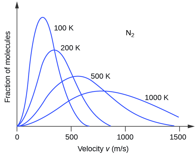"""A graph with four positively or right-skewed curves of varying heights is shown. The horizontal axis is labeled, """"Velocity v ( m divided by s )."""" This axis is marked by increments of 500 beginning at 0 and extending up to 1500. The vertical axis is labeled, """"Fraction of molecules."""" The label, """"N subscript 2,"""" appears in the open space in the upper right area of the graph. The tallest and narrowest of these curves is labeled, """"100 K."""" Its right end appears to touch the horizontal axis around 700 m per s. It is followed by a slightly wider curve which is labeled, """"200 K,"""" that is about three quarters of the height of the initial curve. Its right end appears to touch the horizontal axis around 850 m per s. The third curve is significantly wider and only about half the height of the initial curve. It is labeled, """"500 K."""" Its right end appears to touch the horizontal axis around 1450 m per s. The final curve is only about one third the height of the initial curve. It is much wider than the others, so much so that its right end has not yet reached the horizontal axis. This curve is labeled, """"1000 K."""""""
