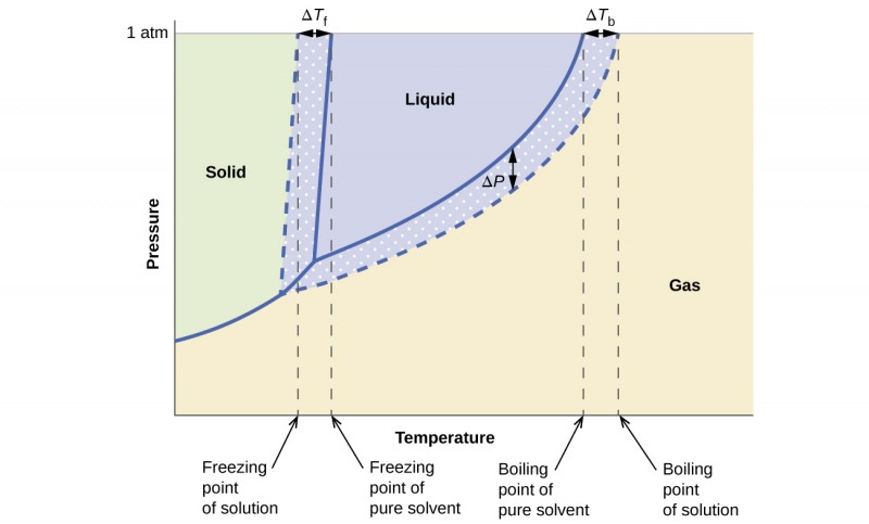 Phase diagram for an aqueous solution of a nonelectrolyte phase diagram for an aqueous solution of a nonelectrolyte ccuart Images