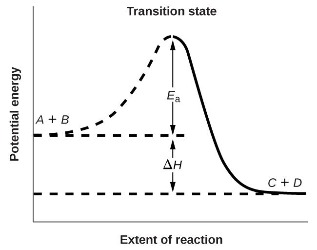Activation Energy And The Arrhenius Equation