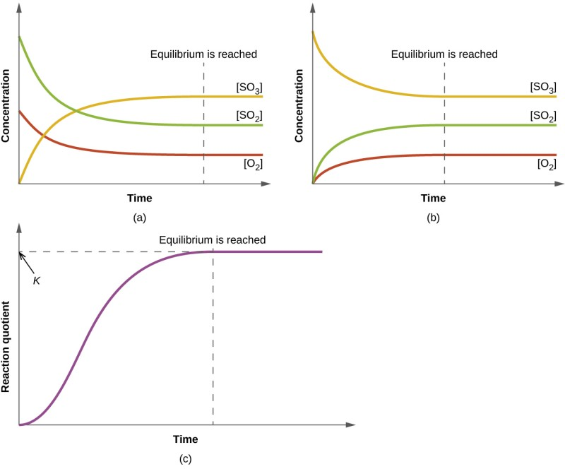 """Three graphs are shown and labeled, """"a,"""" """"b,"""" and """"c."""" All three graphs have a vertical dotted line running through the middle labeled, """"Equilibrium is reached."""" The y-axis on graph a is labeled, """"Concentration,"""" and the x-axis is labeled, """"Time."""" Three curves are plotted on graph a. The first is labeled, """"[ S O subscript 2 ];"""" this line starts high on the y-axis, ends midway down the y-axis, has a steep initial slope and a more gradual slope as it approaches the far right on the x-axis. The second curve on this graph is labeled, """"[ O subscript 2 ];"""" this line mimics the first except that it starts and ends about fifty percent lower on the y-axis. The third curve is the inverse of the first in shape and is labeled, """"[ S O subscript 3 ]."""" The y-axis on graph b is labeled, """"Concentration,"""" and the x-axis is labeled, """"Time."""" Three curves are plotted on graph b. The first is labeled, """"[ S O subscript 2 ];"""" this line starts low on the y-axis, ends midway up the y-axis, has a steep initial slope and a more gradual slope as it approaches the far right on the x-axis. The second curve on this graph is labeled, """"[ O subscript 2 ];"""" this line mimics the first except that it ends about fifty percent lower on the y-axis. The third curve is the inverse of the first in shape and is labeled, """"[ S O subscript 3 ]."""" The y-axis on graph c is labeled, """"Reaction Quotient,"""" and the x-axis is labeled, """"Time."""" A single curve is plotted on graph c. This curve begins at the bottom of the y-axis and rises steeply up near the top of the y-axis, then levels off into a horizontal line. The top point of this line is labeled, """"k."""""""