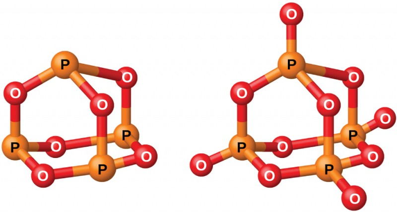 """Two ball-and-stick models are shown. In the left model, three orange atoms labeled, """"P,"""" are single bonded to red atoms labeled, """"O,"""" in an alternating, six-sided ring structure. Each of the orange atoms are also single bonded to another red atom, which are in turn single bonded to a single orange atom. The right model shows three orange atoms labeled, """"P,"""" single bonded to red atoms labeled, """"O,"""" in an alternating, six-sided ring structure. Each of the orange atoms are also single bonded to two more red atoms, one in an upward position and one facing the outside of the molecule. The upward red atoms are single bonded to a single orange atom which is single bonded to a final red atom."""
