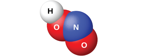 """A space filling model shows a blue atom labeled, """"N,"""" bonded on two sides to red atoms labeled, """"O."""" One of the red atoms is bonded to a white atom labeled, """"H."""""""