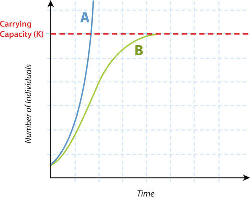 Graph of exponential versus logistic growth