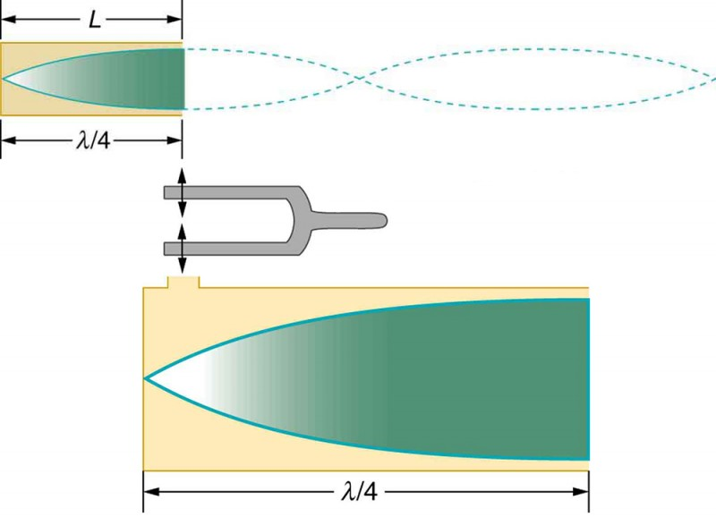 A cone of resonance waves reflected at the closed end of the tube is shown. A tuning fork is shown to vibrate at a small opening above the closed end of the tube. The length of the tube L is given to be equal to lambda divided by four.