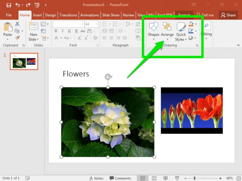 A Microsoft Powerpoint is open with a video on the first and only slide there is also an image of a flower to the left of the video. There is a green box highlighting different formatting options and a green arrow pointing at the option to arrange the content on the page.