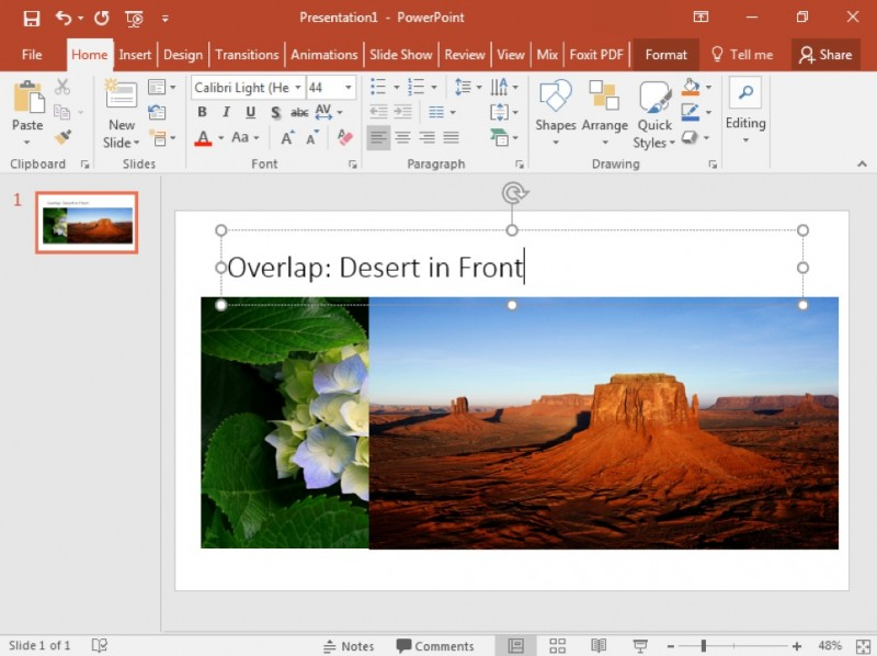 A Microsoft Powerpoint is open to the first and only slide with an image of a flower showing. A new image of a desert has been inserted to the right of the image of the flower and is not overlapping it.