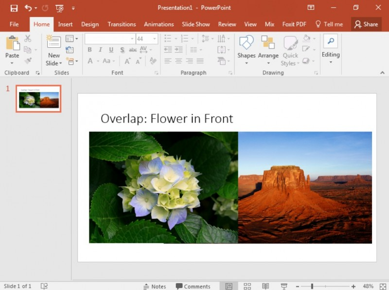 A Microsoft Powerpoint is open to the first and only slide with an image of a flower overlapping an image of a desert to the right.