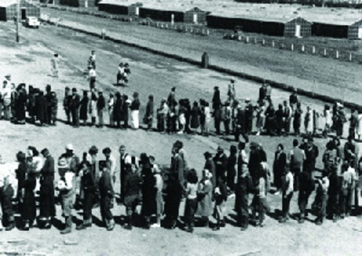 An image of a long line of people that snakes back and forth.