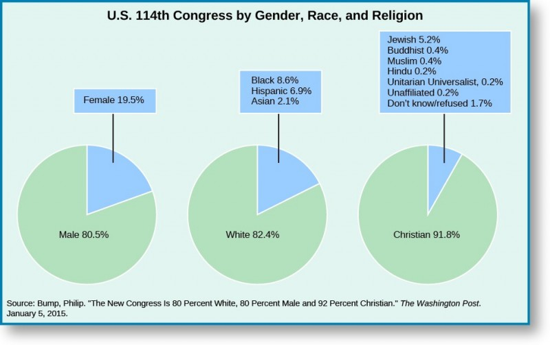A series of three pie charts titled U.S. 114th Congress by Gender, Race, and Religion