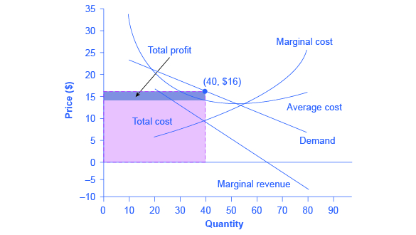 The graph shows that the point for profit maximizing output occurs where marginal revenue equals marginal cost. In addition, profit maximizing price is given by the height of the demand curve at the profit maximizing quantity.