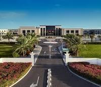 Vice Chancellor's International Scholarship at Emirates Aviation University